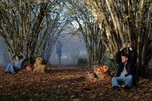 300px-1-11_Scarecrow